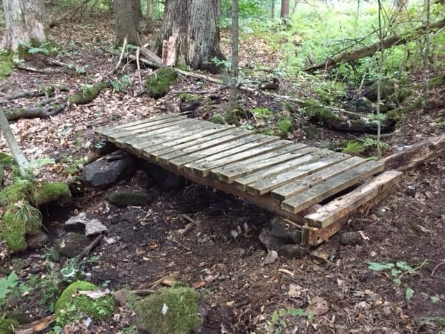 Foot Bridge on Yellow Trail - JT